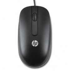 Мышь HP Optical Scroll (QY777AA) Black USB