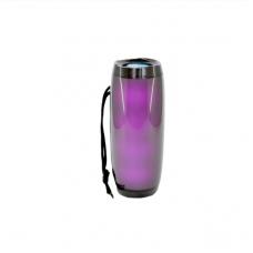 Колонка портативная Bluetooth 10 Вт Aspor CHE 157 Plus Black (969053)