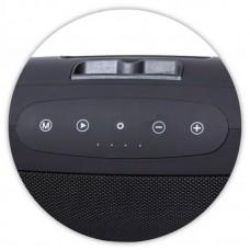 Колонка портативная Bluetooth Zealot S39 Black